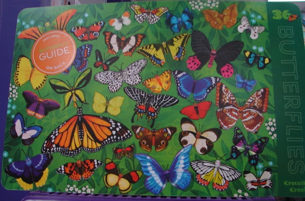 2-Sided Butterflies Placemat