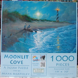 Moonlit Cove 1000